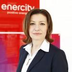 Neue Geschäftsfelder in der Energiewirtschaft ...